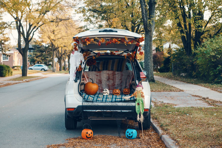 Trick o trunk. white car trunk decorated for halloween. autumn fall decor with red pumpkins