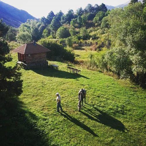 The old man and the horse. Aghveran Actingtogether Publishyourself Makingamagazine Armenia
