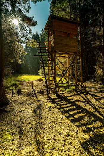RaisedHide Capture Tomorrow Land Tree Plant Architecture Built Structure Nature Tranquility Forest Day Sunlight Wood - Material No People Tranquil Scene Landscape Rural Scene Field Building Exterior Scenics - Nature Hut Outdoors Wheel