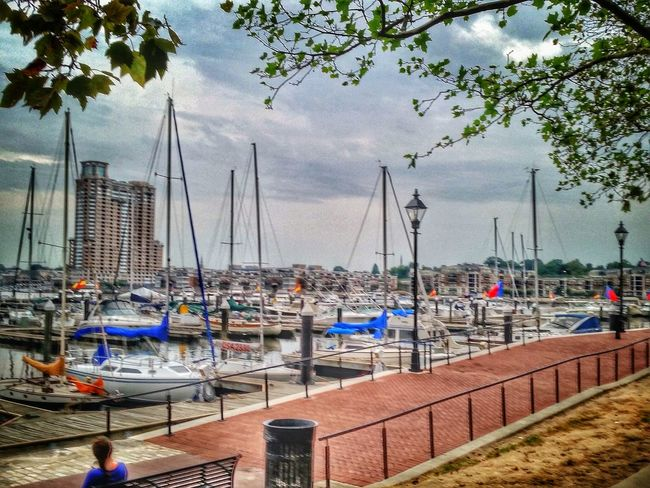 Happy TGI Fence Post Friday from the beautiful city of Baltimore! Next stop Philadelphia. Let's get this party started! TheGathering Streamzoofamily On The Road