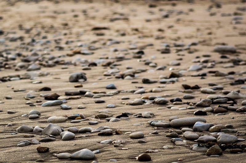 Beach Dof Ilederé Nikon Landscape Abstract