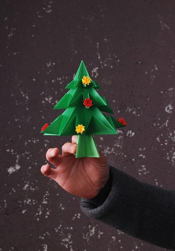 Close-up of man holding christmas tree