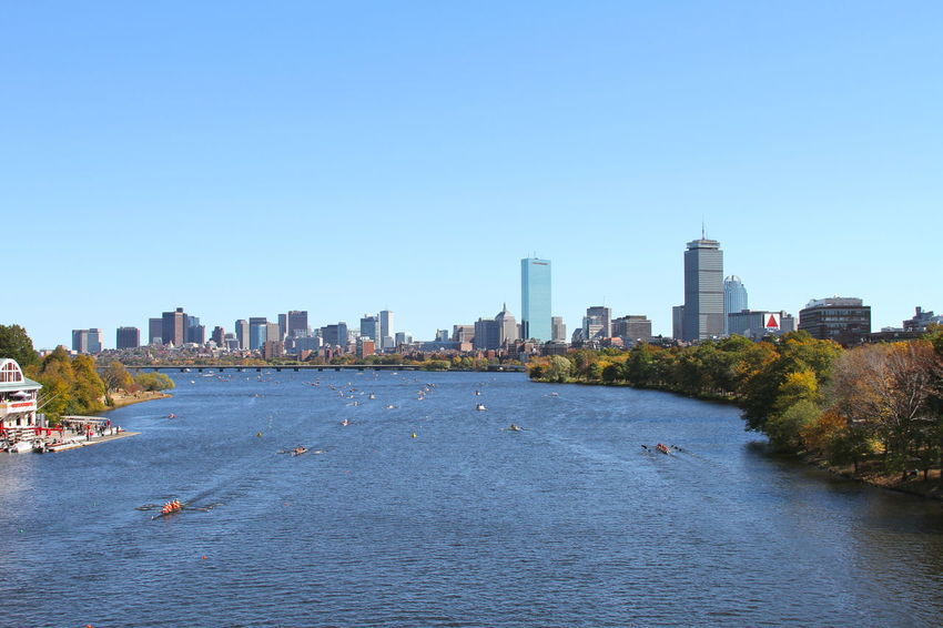 Boston Building Exterior Charles River City Cityscape Clear Sky Day Head Of The Charles Nature Outdoors Race Regatta Row Sky Skyscraper Urban Skyline Water Waterfront