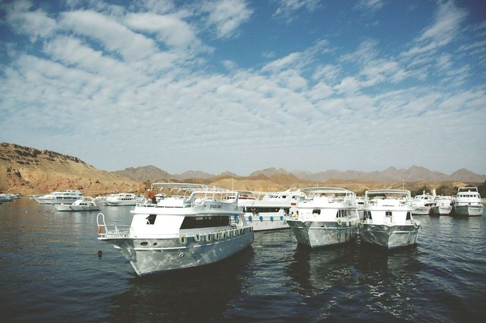 Egypt Taking Photos Relaxing Enjoying Life Time To Travel Holiday Summertime Sea View Boats