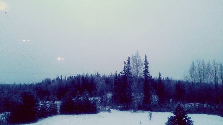 Sterling Alaska Winter Wonderland ❄ It's Beginning To Look A Lot Like Christmas! Its Snowing ☺ Yay!! :)