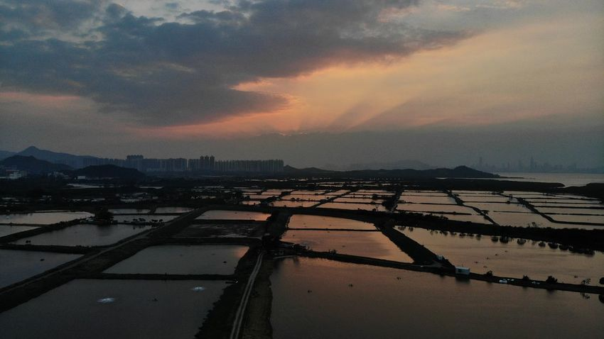 Farm Farmland Hong Kong Landscape_Collection Sunset_collection Countryside Dronephotography Fish Pond Fishery Village Horizon Over Water Landscape Rural Scene