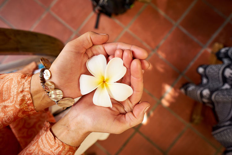 Flower in Hands Beauty In Nature Bracelet Close-up Cupped Hands Day Delicate Beauty Delicate Flowers Dress Flower Flower Head Flower In Hand Focus On Foreground Fragility Freshness Holding Light And Shadow Nature Person Personal Perspective Petal Single Flower White Color White Flower Yellow Color