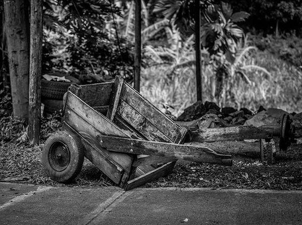 Grenada Andyjohnsonphotography IshootGND Insta_noir Amazingphotohunter Nikon Photography Ig_caribbean PureGrenada Golden_click RuralGND Rural_love Ilivewhereyouvacation Islandlivity Streetstyle