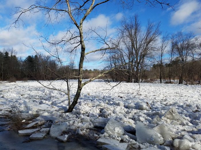 Ice Jam New England  Miller's River Iced River Frozen River Snow Winter Cold Temperature Nature Weather Tranquility