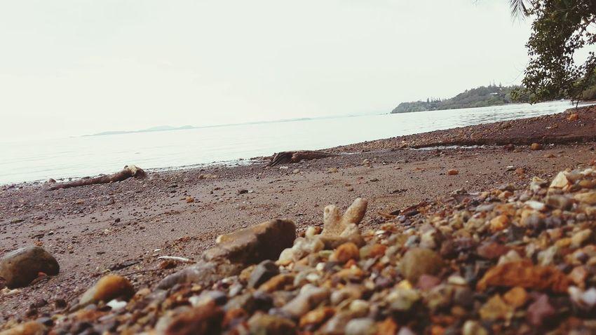 Noumea au loin...plage de Vallon dore Grand Noumea Nouvelle Calédonie Relaxing Taking Photos Picnic