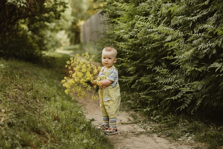 Full length of cute boy holding yellow flowers