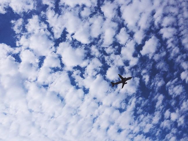 bulut tarlaları. Flying Air Vehicle Sky Low Angle View Airplane Mode Of Transportation Transportation Cloud - Sky No People Nature Day Blue Motion Travel Mid-air on the move Fighter Plane Outdoors White Color Plane