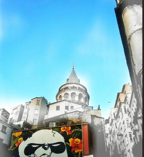 Outside Taking Photos Picoftheday Check This Out Outside Photography Eyem Best Shots Eyem Gallery EyeEmBestPics Colorful Life Colorful City Hanging Out Hello Galata Tower Galata Kulesi, Istanbul, Turkiye, Turkey Photography Eyeemcitys Panda Streetart/graffiti Streetart #street #streetphotography #tagsforlikes #sprayart #urban #urbanart #urbanwalls #wall #wallporn #graffitiigers #stencilart #art #graffiti #instagraffiti #instagood #artwork #mural #graffitiporn #photooftheday #stencil #streetartistry #photograp