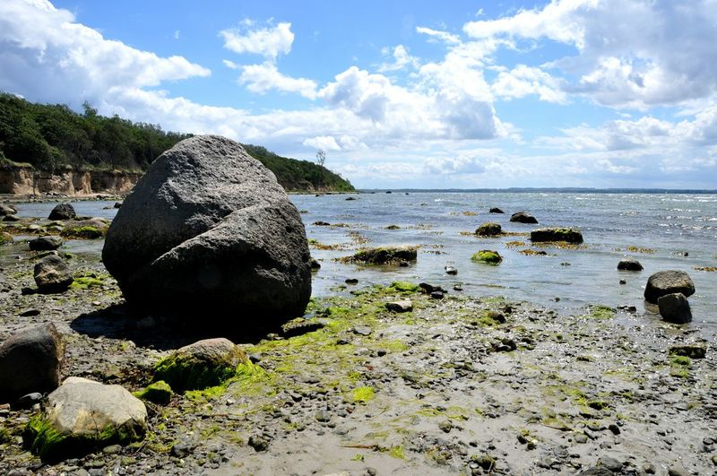 Low Tide Baltic