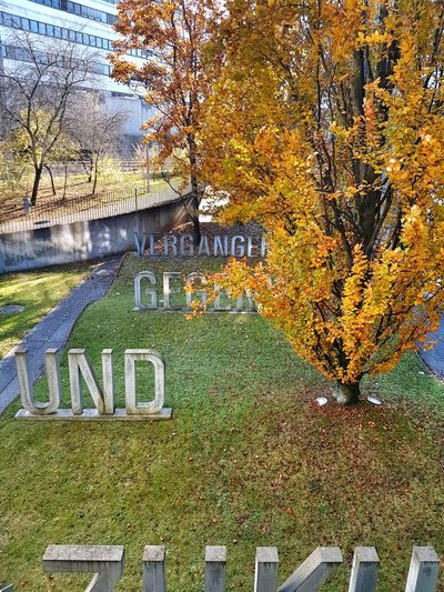 No People Multi Colored Day Yellow Multi Colored Day Outdoors Trees Foliage Autumn Colors Text Vergangenheit Gegenwart Zukunft