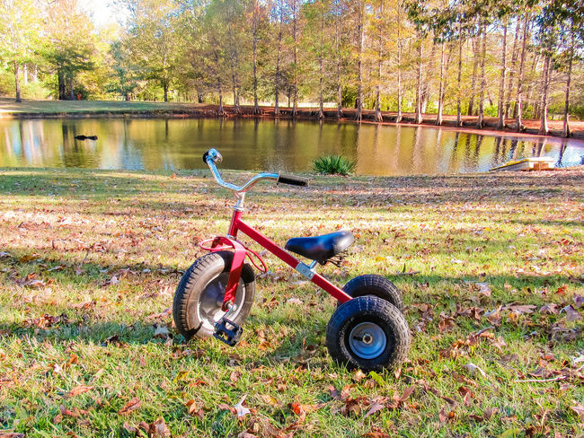 Day Outdoors Bicycle No People Grass Childhood Tree Nature Trike Cycle Trikes Vechicle Bike Single Object Riding Bike Bikeporn Riding Toy Kids Childs Toy Bikes Tire Toy Kids Toy Nature Land Vehicle Transportation