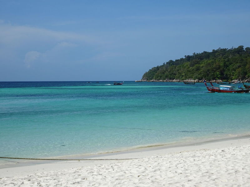 Beach lover🌊🌊 Tropical Koh Lipe Beach Day Beach Walk Beautiful Beauty In Nature Beautiful Nature LoveNature Favorite Places My favorite place Travel Viaje Water Swimming UnderSea Sea Palm Tree Nautical Vessel Beach Beauty Snorkeling Tropical Tree Reef Seascape Lagoon Coconut Palm Tree Coral Soft Coral Tropical Fish Ocean Floor