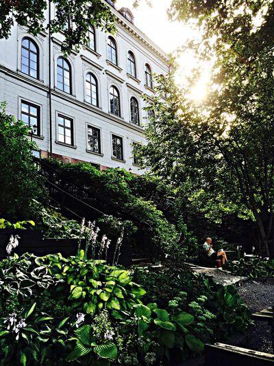 Stockholm Södermalm Eye Em Nature Lover RePicture Wealth Nature On Your Doorstep Summer Views Urban Spring Fever