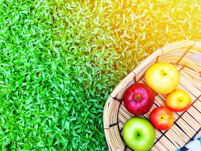Basket Green Color Grass High Angle View Healthy Eating Fruit Freshness Food And Drink Food Picnic Directly Above Outdoors Summer Picnic Basket Day No People Nature Apple - Fruit