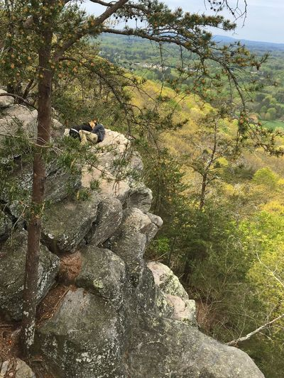 Huggers Cliff Trees Scenic Boulders Indianseat Trail Lost In The Landscape Perspectives On Nature