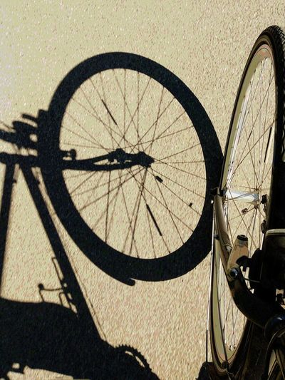 bike trip in