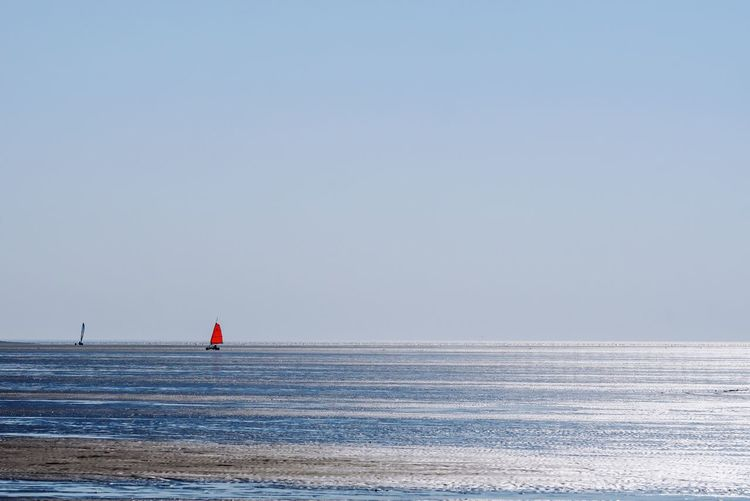Northsea Red Color Sailing Beach Sailing Beach Strandsegeln Nordsee Rømø Rømøstrand Gegenlicht Water Sea Sky Horizon Over Water Scenics - Nature Nature Horizon Day