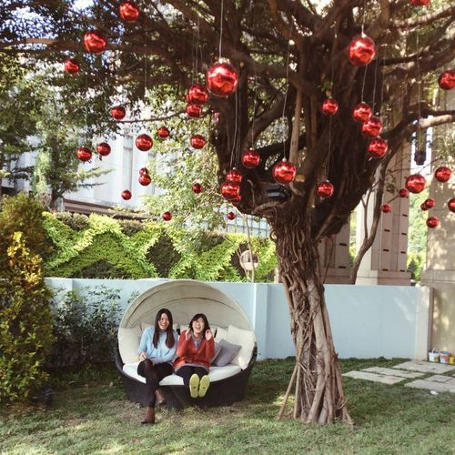 Two women sitting in lawn decorated with christmas ornaments