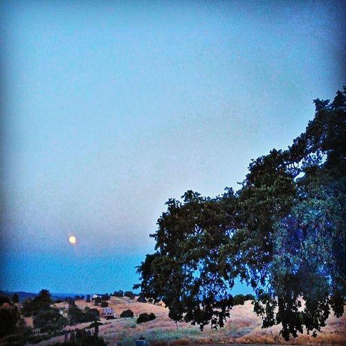 Supermoon just after moonrise. Supermoon Nasasupermoon Moon Instagood bestofday