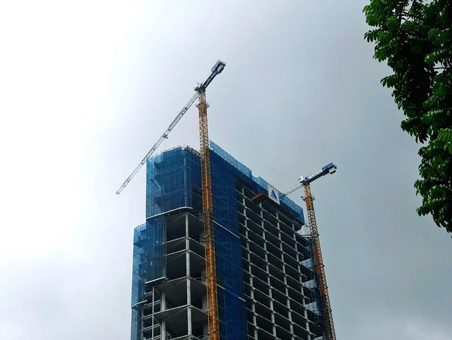 Double cranes Crane Lookingup Crane - Construction Machinery Low Angle View Sky Building Exterior Architecture Built Structure Nature No People Outdoors Day Building Office Building Exterior City Tree Tall - High Skyscraper Tower Clear Sky