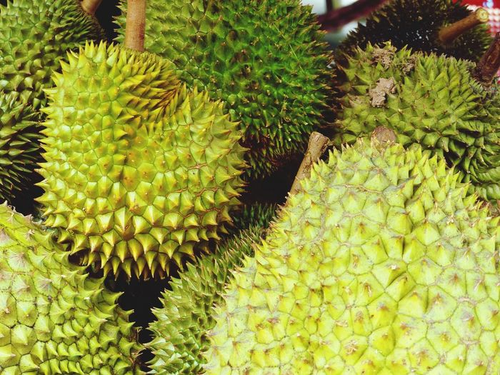 Durian Smelly Fruit Green Color Durian Green Color Growth Spiked Outdoors Nature Plant Food Beauty In Nature