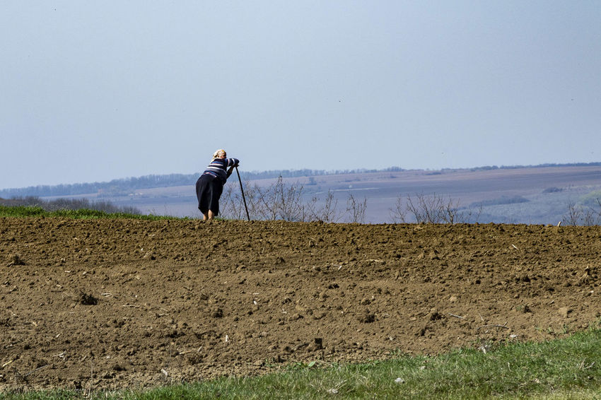 Agriculture Clear Sky Farmer Field Landscape One Person People Real People Rural Scene Sky Standing BYOPaper!