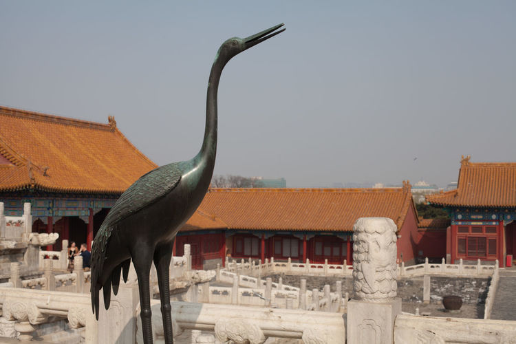 Statue Of Bird At Forbidden City Against Clear Sky