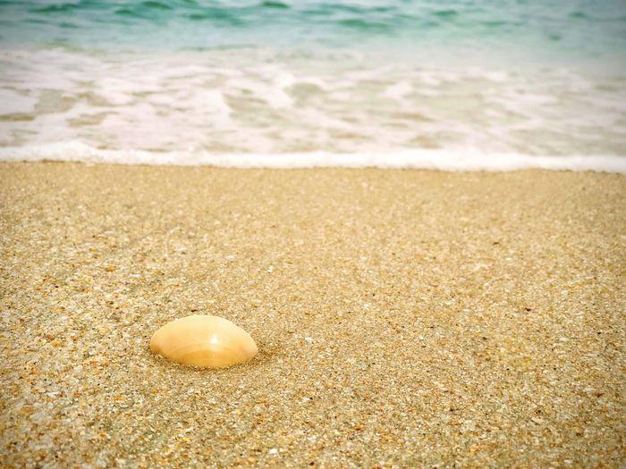 Wave Sea Water
