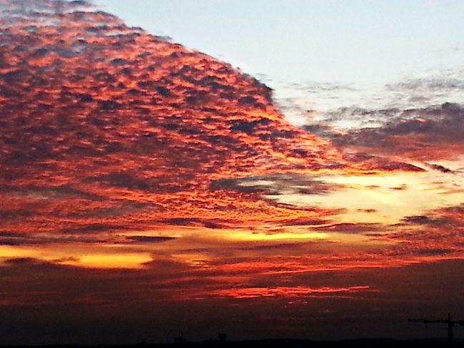 Sunset 190614 Sunset Sky And Clouds Sun! Popular