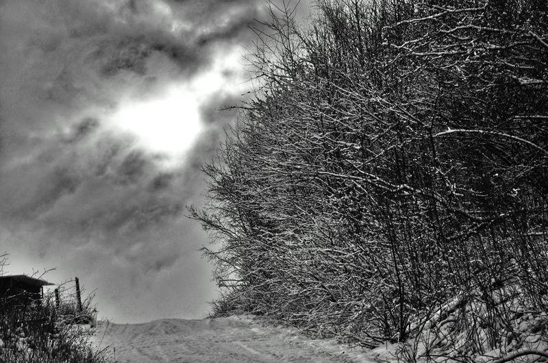 Winter Snow ❄ Clouds Black And White Monochrome