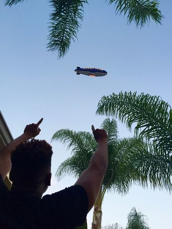 Blimp over Hollywood. Blimp Palm Trees Taking Photos Celebration Pointing Blue Blue Sky Flying Floating