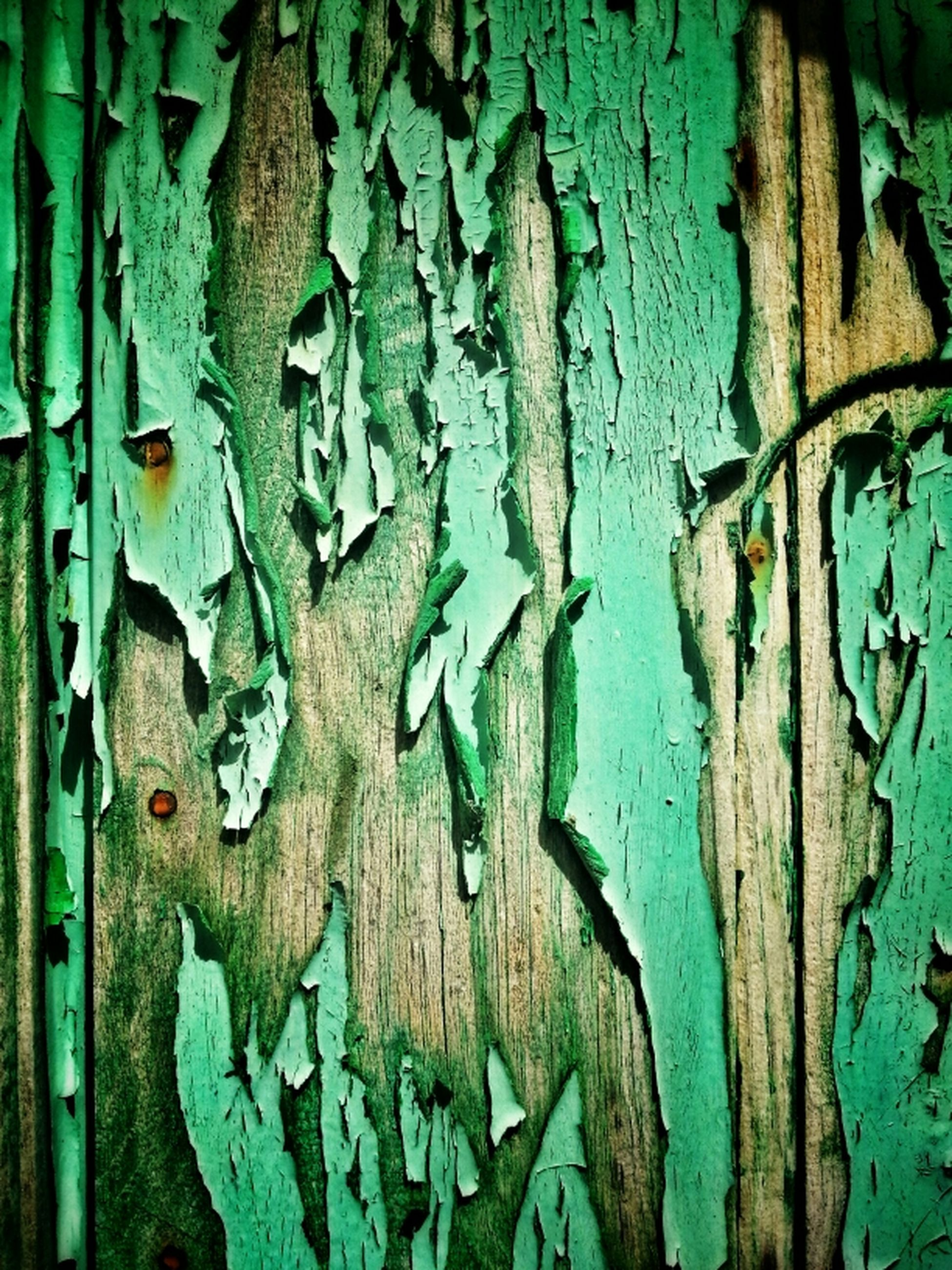 weathered, old, full frame, close-up, rusty, deterioration, backgrounds, built structure, run-down, textured, metal, wall - building feature, door, wood - material, architecture, damaged, blue, abandoned, obsolete, wall