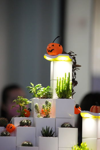 Close-up of stuffed toy on potted plant