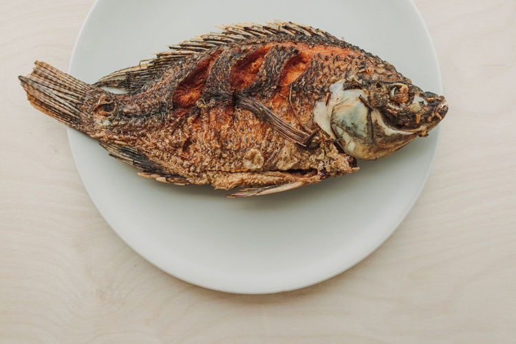 High angle view of fish in plate on table