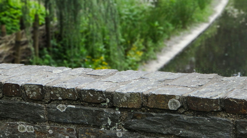 Focus On Foreground Close-up Green Color Stone Material Surface Level Stone Outdoors Green Day Nantes, France Nantes Eyeemphoto EyeEm Tranquil Scene Mypointofview Leaf