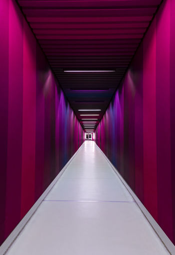 A corridor in the Uni Spital Basel Direction The Way Forward Diminishing Perspective Architecture Indoors  No People Red Built Structure Building Illuminated Corridor Empty Arcade Lighting Equipment vanishing point In A Row Tunnel Purple Absence Long Nikon Nikonphotography Minimalism Minimalist Architecture Architecture_collection Architectural Column Pink Color Colors The Architect - 2019 EyeEm Awards
