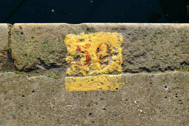 Harbor Water Number 50 Quay Yellow Textured  Close-up Paint