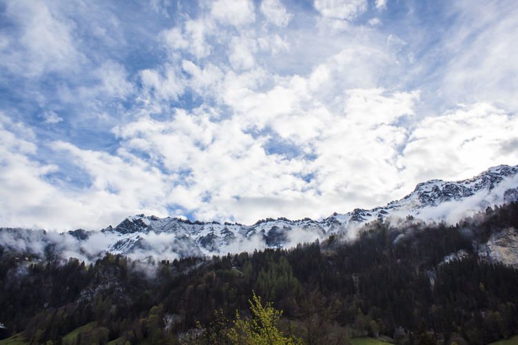 Cloud - Sky Sky Scenics - Nature Beauty In Nature Tree Tranquil Scene Tranquility Plant Mountain Nature Day No People Non-urban Scene Environment Snow Low Angle View Snowcapped Mountain