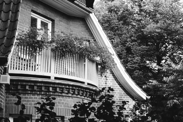 Balcony Architecture Building Exterior Built Structure Tree Outdoors No People Day City Balcony Living House Blackandwhite Photography Street Photography Black & White Black And White Blackandwhite City Streetphoto_bw Streetphotography