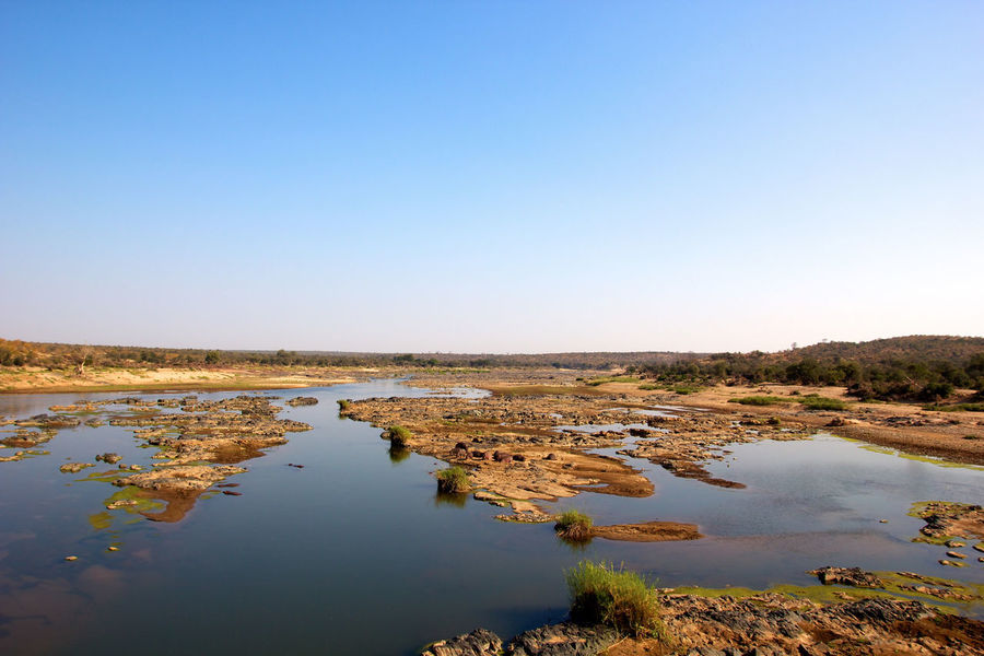 River in Kruger National Park, South Africa African Landscape Beauty In Nature Clear Sky Day Kruger Park Landscape Nature No People Reflection River Scenics Standing Water Stream - Flowing Water Tranquil Scene Water Wetland
