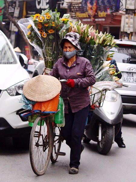 Hanoi, Vietnam Ba Dinh, Vietnam I Love Vietnam Amatuer Photographer Street Vendor Flowers Flower Seller Selling Flowers