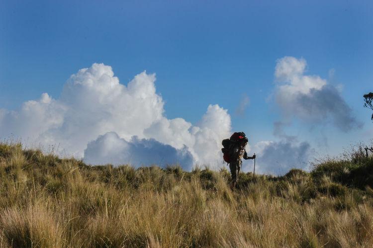 Hiker standing on grassy hill against sky