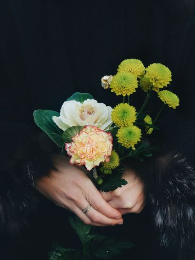Cropped Image Of Woman Holding Flowers Against Black Background