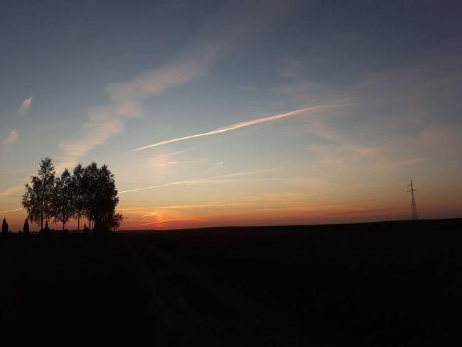 Skye #tree #bluesky #Plane #airplane Tree Sunset Silhouette Sky Landscape Moody Sky Romantic Sky Horizon Over Land Sky Only Summer Exploratorium