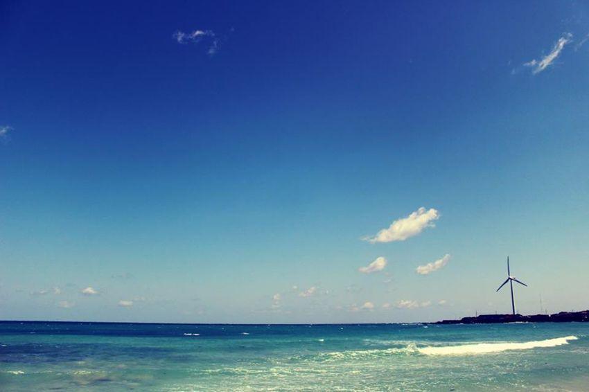 제주도 월정리해변